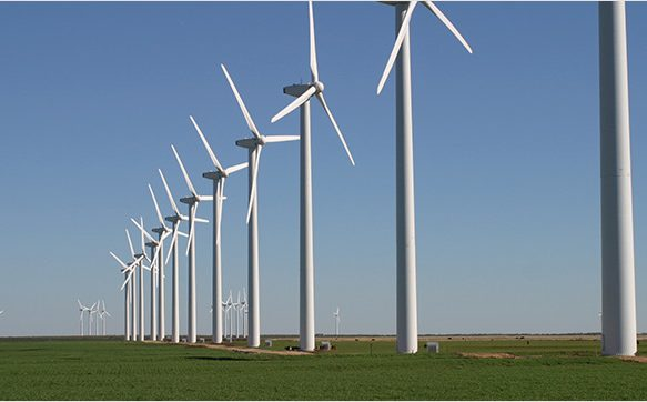 India Holds Its First Wind Power Auction